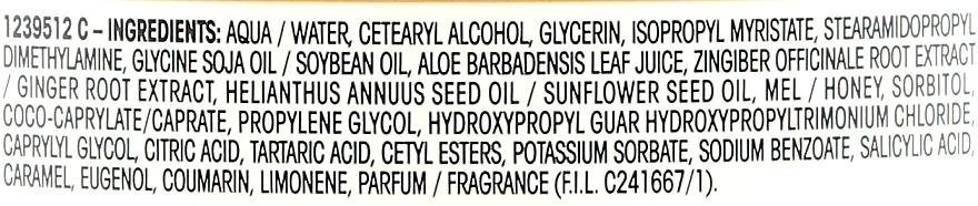 Regenerierende Haarspülung für erschöpftes Haar mit Ingwer - Garnier Botanic Therapy — Bild N3