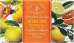 Naturseife Citrus - Saponificio Artigianale Fiorentino Citrus Scented Soap Armonia Collection — Bild N1