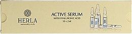 Düfte, Parfümerie und Kosmetik Aktives Gesichtsserum mit Hyaluronsäure - Herla Hydraessence Active Serum With Hyaluronic Acid